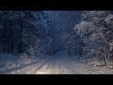 снег кружится,летает...